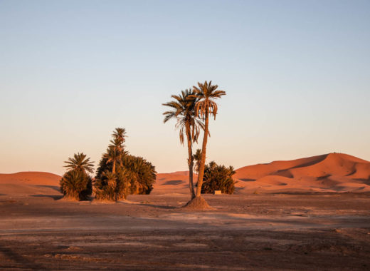 Zeitgeist Living Marokko