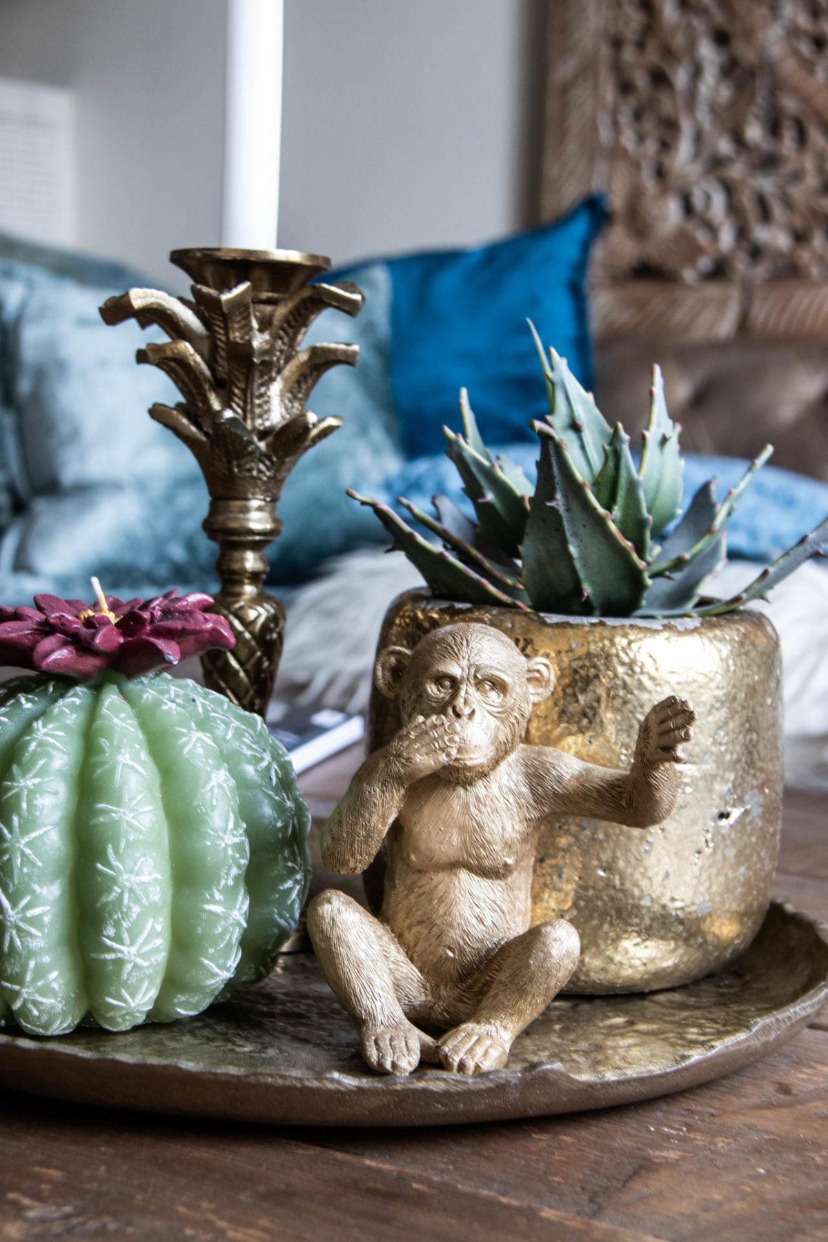 Zeitgeist Living Kaktus & little Monkey