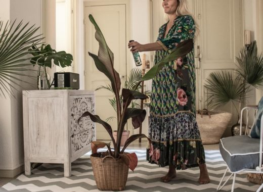Zeitgeist Living Undergreen Detox Kur für meine Pflanzen
