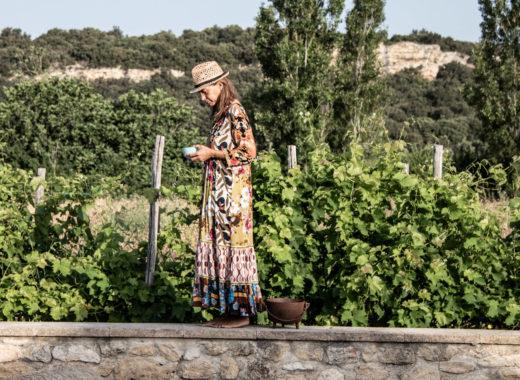 Zeitgeist Living - Sommertage in der Provence