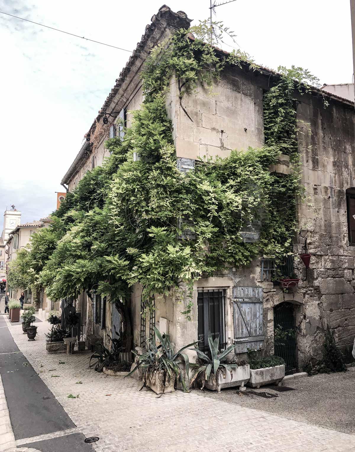 ZEITGEIST LIVING Herbsttage in der Provence 2
