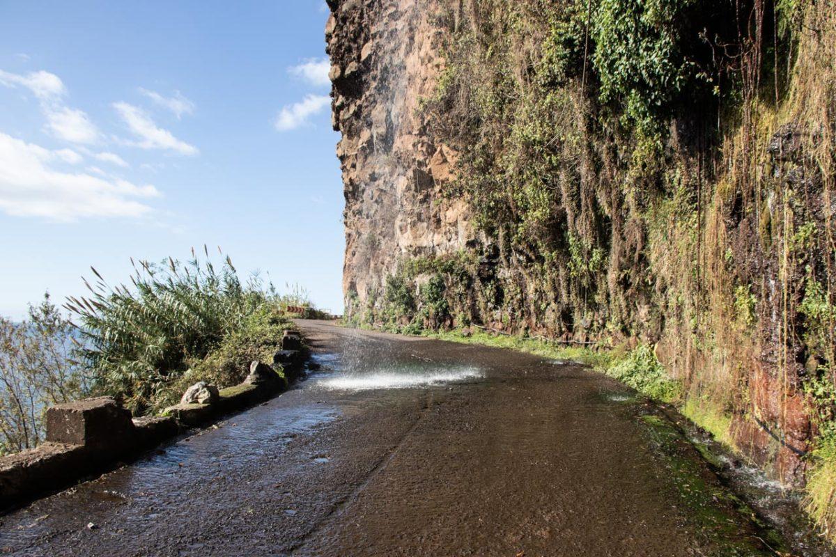Zeitgeist Living Madeira Reise Tipps